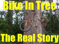 Bike In Tree – Vashon Island