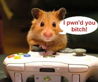 Mouse Pwnage