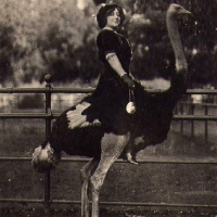 lady-riding-big-bird.jpg