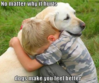 dogs make you boy feel better