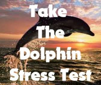 Dolphin Stress Test