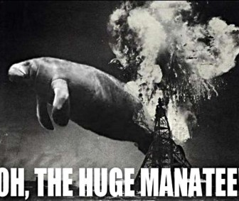 Oh the huge manatee