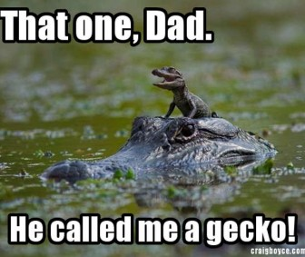 Dad, He Called Me A Gecko